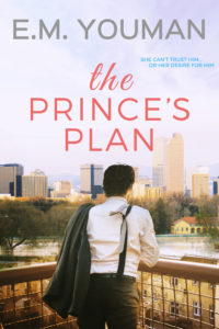 The Prince's Plan ebook